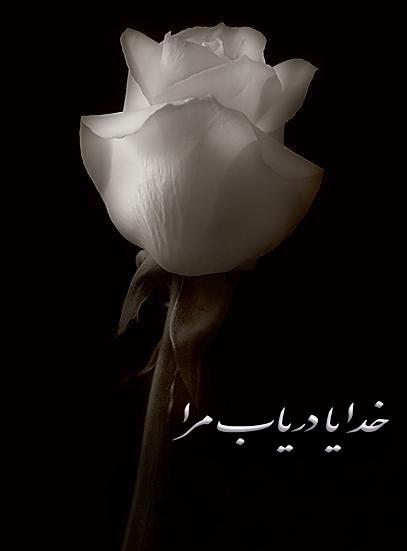 http://baharjavdan.persiangig.com/image/daryab.jpg